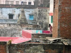 Ganges V