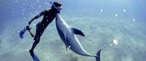 hombre delfín