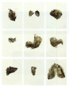 06) Kiki Smith - Possesion Is Nine tenths of the law 1- Portfolio de 9 serigrafias y monocpias - 1985