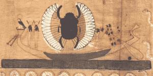 escarabajo canoa