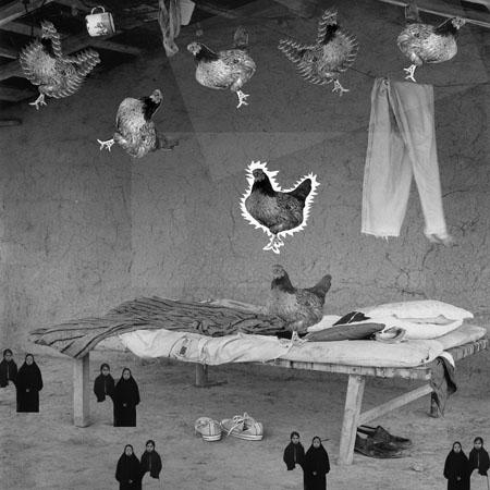 """Zimmermann, M. """"Alucinación"""". Serie Un perro en el paraíso"""
