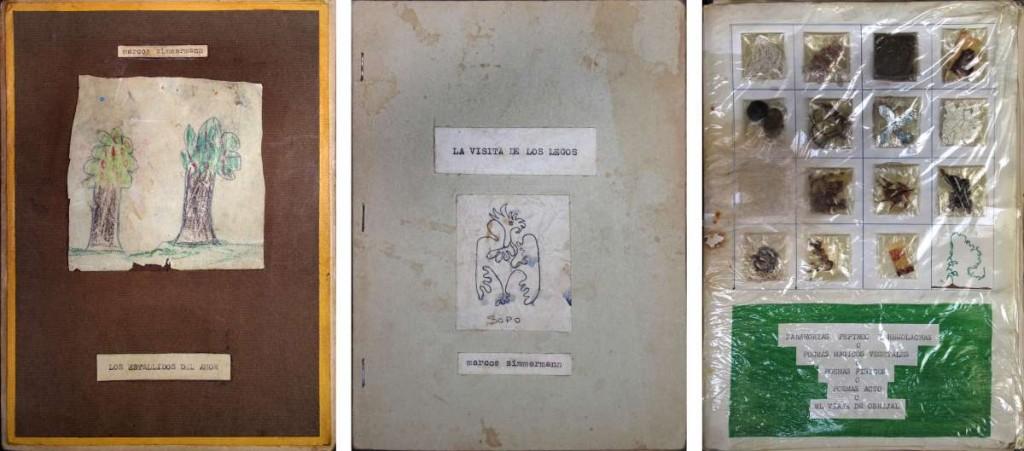 """Zimmerman, M.""""Libros de poesía""""."""