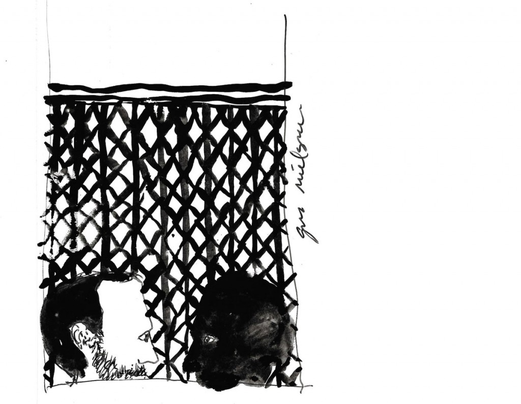 Dibujo de Gustavo Nielsen