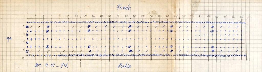 imagen 02 - gráfico abuelo . distrubucion de plantas y almacigos I