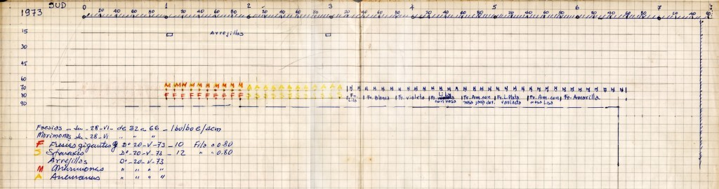 imagen 03 - grafico abuelo - plantines clasificacion - orientacion y crecimiento