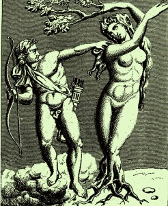 La flecha del desamor cosifica (Apolo y Dafne)
