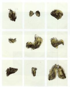 06) Kiki Smith - Possesion Is Nine tenths of the law 1- Portfolio de 9 serigrafias y monocpias - 1985