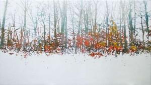 bosque-nevado3-90x150web