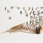 aleester3Chris-Maynard-Plumas-de-aves-convertidas-en-arte2