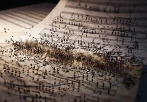 Radio New Zealand Concert-Musical Battle