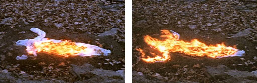 "Ana Mendieta. ""Alma. Silueta en Fuego""."