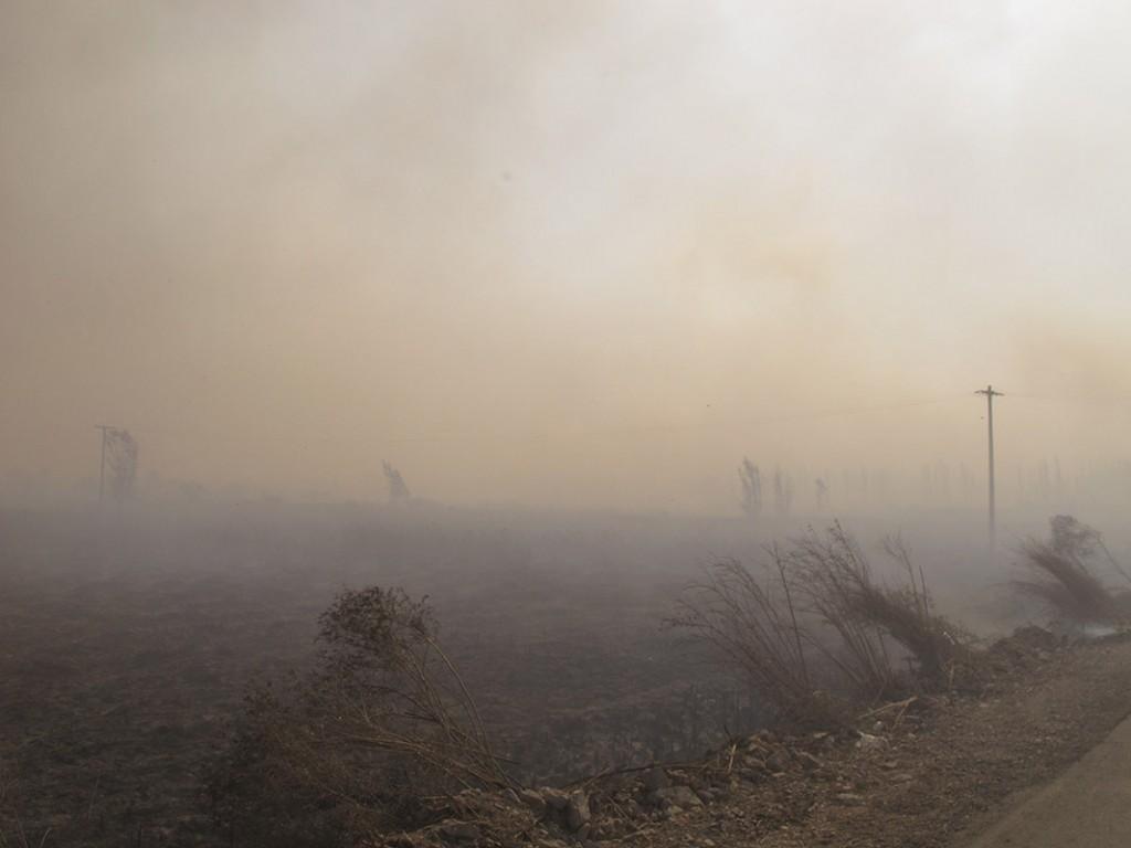 "Oscar Pintor. ""Incendio VIII"". 2011"