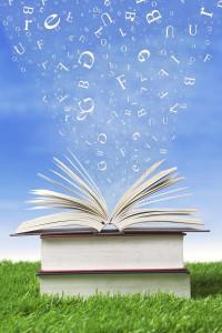 pila-de-libros-al-aire-libre-25394981