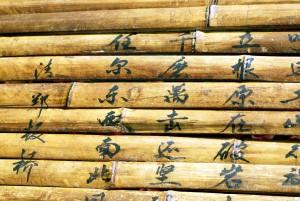 bambu-libro
