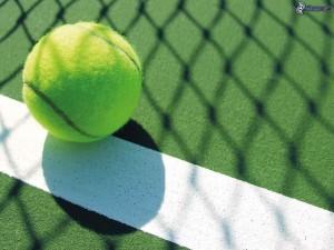 pelota-de-tenis-179695