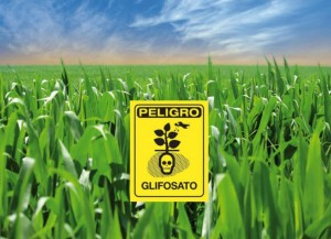 Glifosato-1