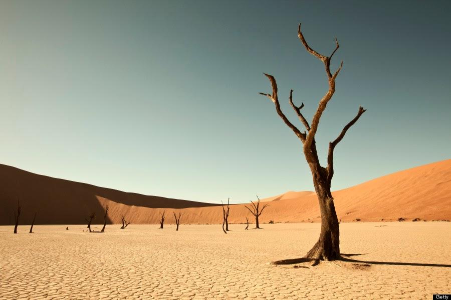 """""""Plaza de las palabras."""" NAMIBIA-DESERT"""