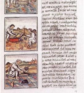 Codex florentino