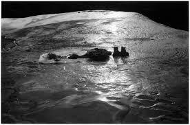 Ensenada oscura, Adriana Lestido