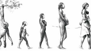 med_evolucion